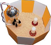 Farm Innovators Baby Chick Starter Home